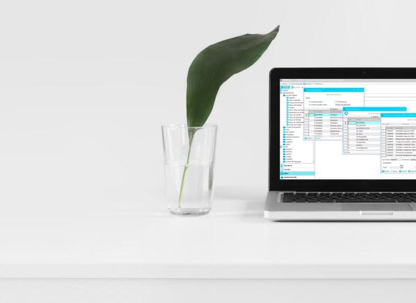 Programa de gestión Ahora Express - Modelo Freeware